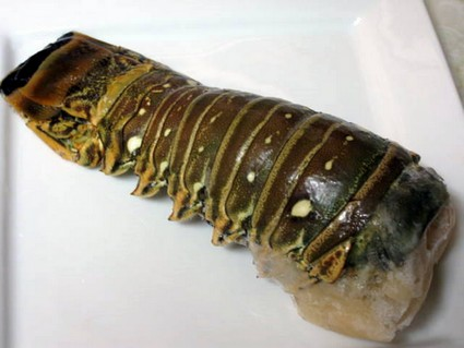 frozen lobster tail