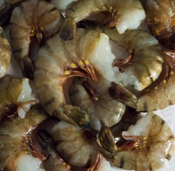 raw headless shell on shrimp