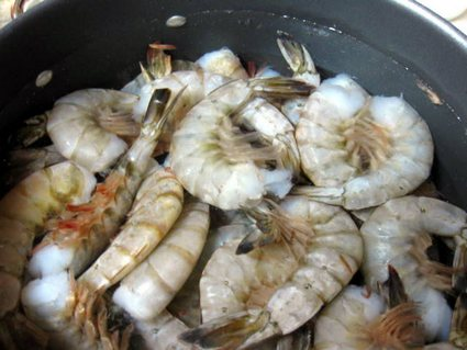 shrimp in pan of water